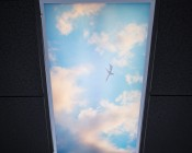 Skylens™ Fluorescent Light Diffuser - Jet Set Decorative Light Cover - 2' x 4': Installed in Fluorescent Fixture in Drop Ceiling