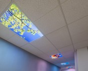 Tunable White LED Skylight w/ Starry Night SkyLens® - 2x4 - Dimmable - Drop Ceiling Recessed Mount: Showing Hallway With Virtual Skylights Installed.