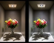 LED In-Ground Well Light - 6 Watt: Warm White Versus Cool White
