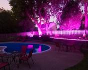 Outdoor LED Strip Lights - Pink 12V LED Tape Light - Weatherproof: Installed in Outdoor Landscape