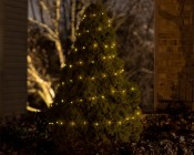 Battery Powered LED Fairy Lights w/ Copper Wire - 32'
