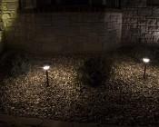 LED Landscape Path Lights - Single Tier - 4 Watt: Installed in Front Landscape- Natural White