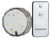Submersible LED Accent Light with Infrared Remote