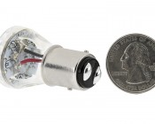 1157 LED Bulb - Dual Intensity 25 LED Motorcycle Bulb: Back View With Size Comparison