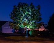 LED In Ground Well Light - 9 x 1W High Power RGB LEDs: Installed Under Tree