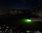 LED Underwater Boat Lights and Dock Lights - Single Lens - 60W: Shown Installed On Dock In White.  Green Tint Is From Mississippi River Water.