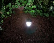 921 LED Bulb - 10 SMD LED Tower - Miniature Wedge Retrofit: On Showing Beam Pattern In Mini Bollard With Frosted Glass.