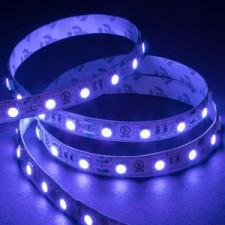 Shop for UV (Blacklight)