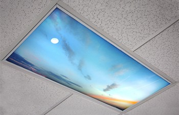 Shop for Drop Ceiling