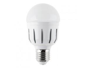 E27 LED Bulb, 8W, 12 Volt AC/DC