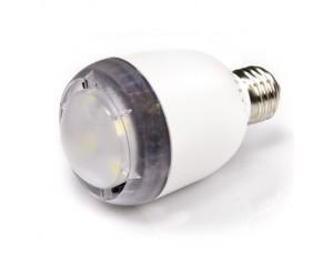 Edison base bulb