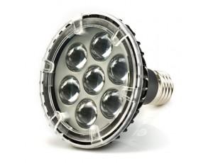 Medium base bulb