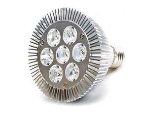 PAR30 LED Bulb, 9W Dimmable