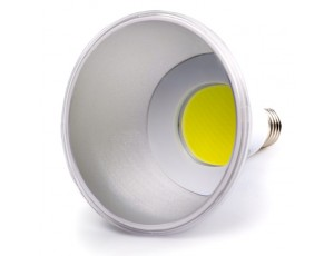 PAR38 LED Bulb, Weatherproof