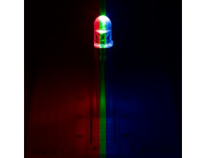 RL5-RGB-C-2 Clear TriColor LED
