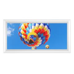 LED Skylight w/ Balloon 2 Skylens® - 1x2 Dimmable LED Panel Light - Surface Mount