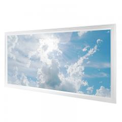 LED Skylight - 2x4 Dimmable Even-Glow® LED Panel Light w/ SkyLens® - Flush Mount