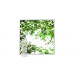 Tunable White LED Skylight w/ Forest Boughs Skylens® Diffuser - 2x2 Dimmable LED Panel Light - Drop Ceiling
