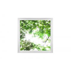 LED Skylight w/ Forest Boughs Skylens® - 2x2 Dimmable LED Panel Light - Surface Mount/Drop Ceiling