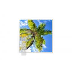Tunable White LED Skylight w/ Palm Trees Skylens® Diffuser - 2x2 Dimmable LED Panel Light - Drop Ceiling