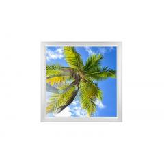 LED Skylight w/ Palm Trees Skylens® - 2x2 Dimmable LED Panel Light - Surface Mount/Drop Ceiling