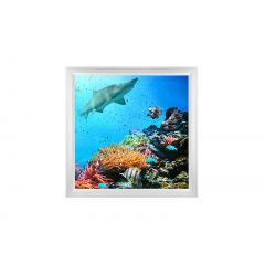 LED Skylight w/ Ocean Life Skylens® - 2x2 Dimmable LED Panel Light - Flush Mount/Drop Ceiling