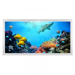 LED Skylight w/ Ocean Life Skylens® - 2x4 Dimmable LED Panel Light - Surface Mount/Drop Ceiling