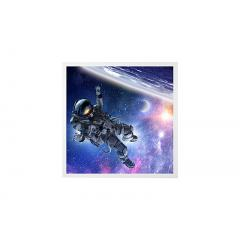 LED Skylight w/ Astronaut SkyLens® - 2x2 Dimmable LED Panel Light - Drop Ceiling