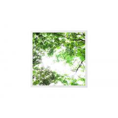 LED Skylight w/ Forest Boughs SkyLens® - 2x2 Dimmable LED Panel Light - Drop Ceiling