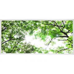 LED Skylight w/ Forest Boughs Skylens® - 2x4 Dimmable LED Panel Light - Drop Ceiling