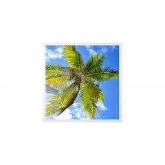 LED Skylight w/ Palm Trees SkyLens® - 2x2 Dimmable LED Panel Light - Drop Ceiling