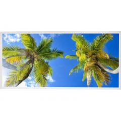LED Skylight w/ Palm Trees Skylens® - 2x4 Dimmable LED Panel Light - Drop Ceiling