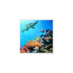 LED Skylight w/ Ocean Life SkyLens® - 2x2 Dimmable LED Panel Light - Drop Ceiling