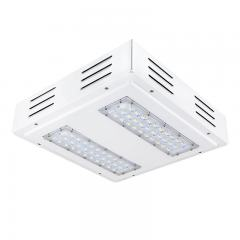 LED Canopy Lights - 100W - 4000K - Flush/Surface Mount - Rectangular LED Beam Pattern - 250W MH Equivalent - 10,000 Lumens