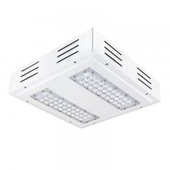 LED Canopy Lights - 60W - 4000K - Flush/Surface Mount - Square LED Beam Pattern - 100W MH Equivalent - 6,000 Lumens