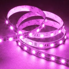 Outdoor LED Strip Lights - Pink 12V LED Tape Light w/ Plug and Play Connectors - Weatherproof - 25 Lumens/ft.