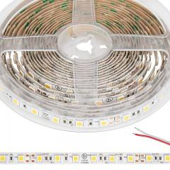 5050 Single-Color LED Strip Light/Tape Light - 24V - IP20 - 305 lm/ft