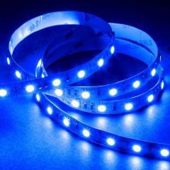 5050 Single-Color LED Strip Light/Tape Light - 12V - IP20 - 385 lm/ft