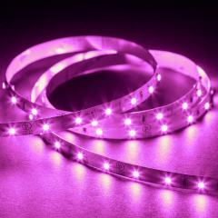 3528 Single-Color LED Strip Light/Tape Light - 24V - IP20 - 115 lm/ft