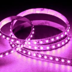 3528 Single-Color LED Strip Light/Tape Light - 24V - IP20 - 230 lm/ft