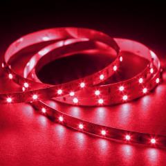 Custom Length Single Color LED Strip Light - Eco Series Tape Light - 24V - IP20