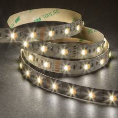5050 RGBW LED Strip Light - Color-Changing LED Tape Light w/ White and Multicolor LEDs - 12V - IP20 - 122 lm/ft - 4-in-1 Chip
