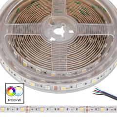 5050 RGB+W LED Strip Light - Color-Changing LED Tape Light w/ White and Multicolor LEDs - 12V - IP20 - 204 lm/ft