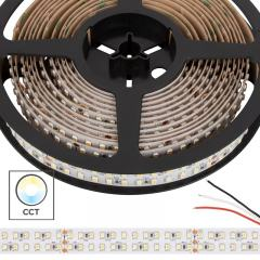 3528 Tunable White LED Strip Light - Dual Row LED Tape Light - 24V - IP20 - 600 Lumens/ft