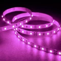 5m 3528 Single Color LED Strip Light - LED Tape Light - 12V - IP54