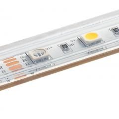 5050 RGB+W LED Strip Light - Color Changing + White LED Tape Light - 24V - IP67  Weatherproof - 5m - 204 Lm/Ft