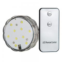 Submersible LED Accent Light w/Remote