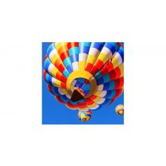 Skylens™ Fluorescent Light Diffuser - Balloon 2 Decorative Light Cover - 2' x 2'