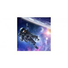 Skylens® Fluorescent Light Diffuser - Astronaut Decorative Light Cover - 2' x 2'