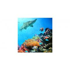 Skylens® Fluorescent Light Diffuser - Ocean Life Decorative Light Cover - 2' x 2'